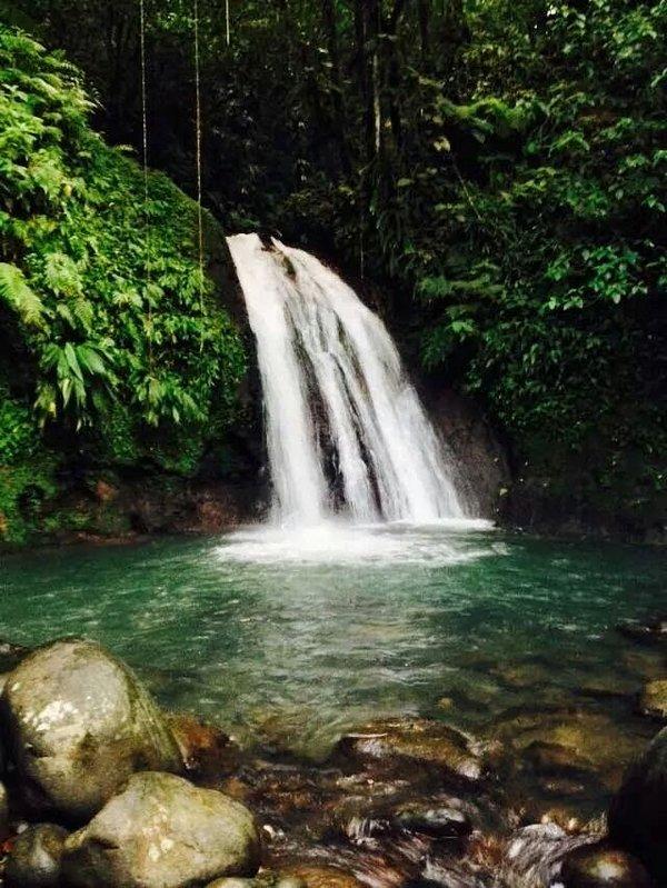 cangrejos de río en cascada