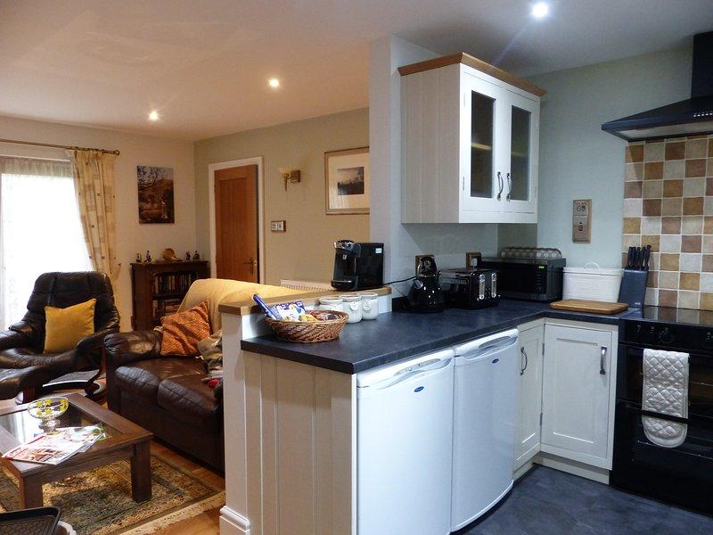 open plan modern living space