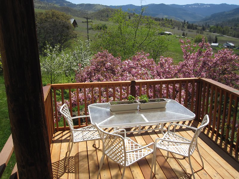 Back deck in the Spring.