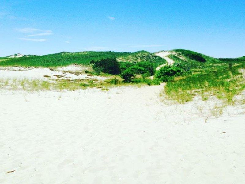 Una playa aislada en la bahía de Wellfleet