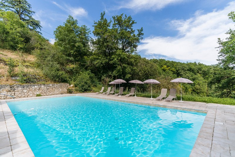 Saux Chateau Sleeps 24 with Pool - 5049462, location de vacances à Sérignac