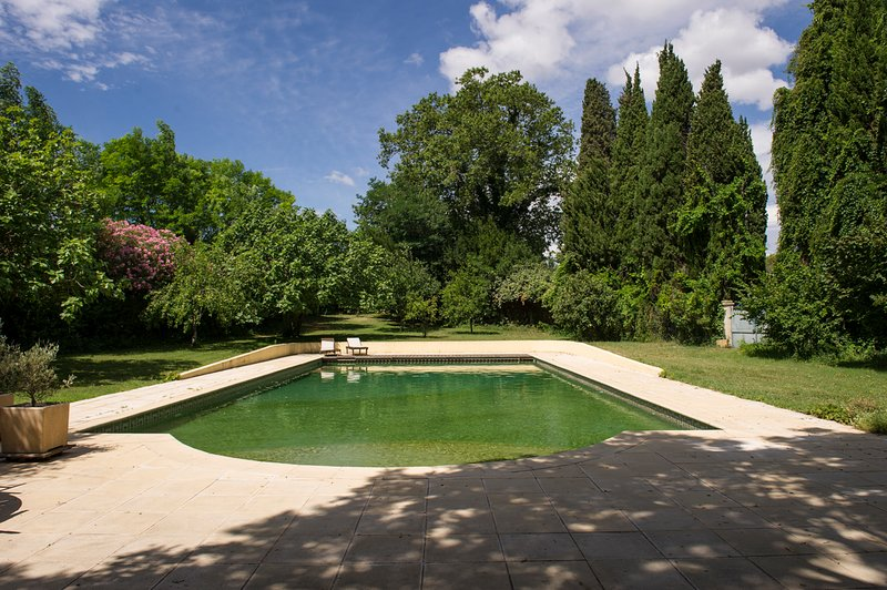 Montagnac Chateau Sleeps 14 with Pool - 5049500, vacation rental in Aumes