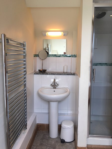 Heated towel rail and basin with a mixer tap