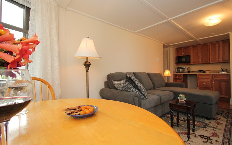 Living room with kitchenette in background