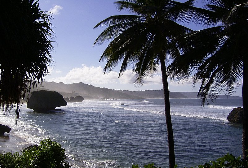 East coast at Bathsheba, a surfers paradise. Easy to get there by bus.
