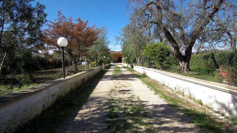 Villa Maila, tra i mari del Salento, vacation rental in Latiano