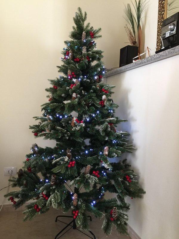 Christmas in Mogan