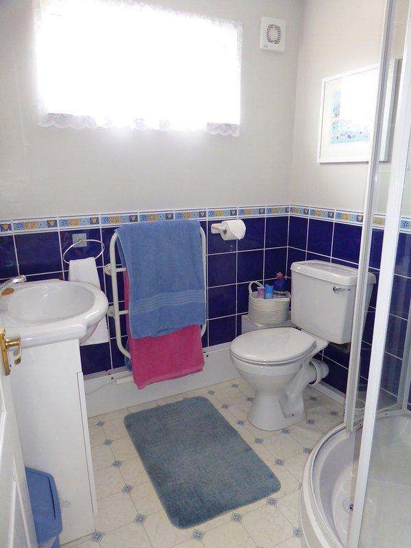 Shower / toilet