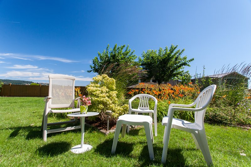 Basking In the Sun in Landscaped Yard