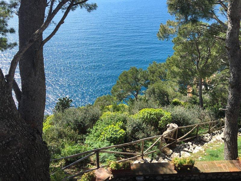 view Marina Piccola