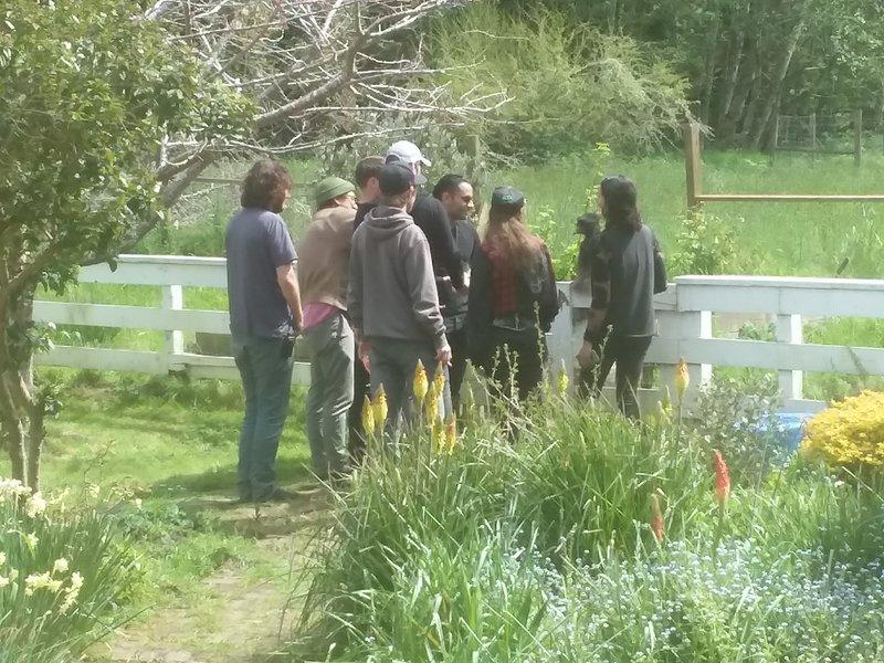Un grupo de personas que visitan el emú. Tenemos capacidad para grupos. Pedir.
