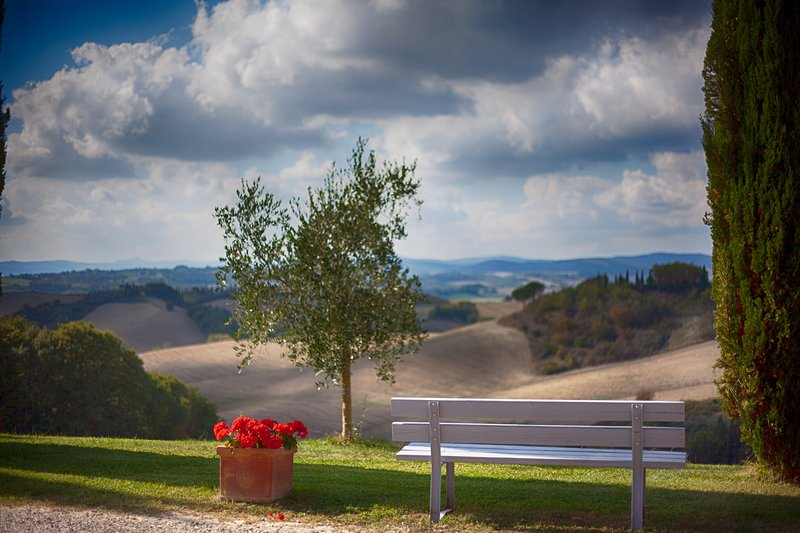 CELESTE - Romantica camera con vista tramonto, vacation rental in Buonconvento