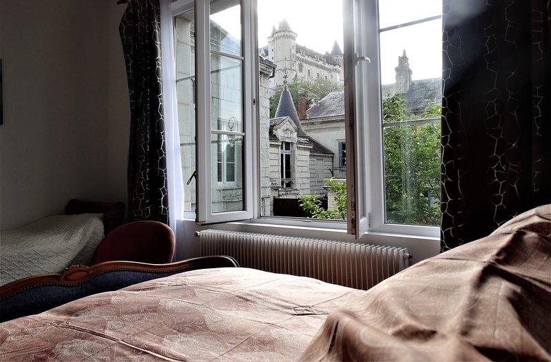 Vue splendide sur le Château et la Loire, holiday rental in Allonnes
