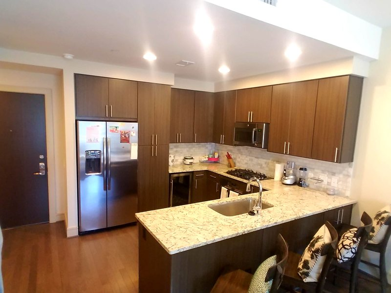 Luxury High-Rise Living Downtown, vacation rental in Houston