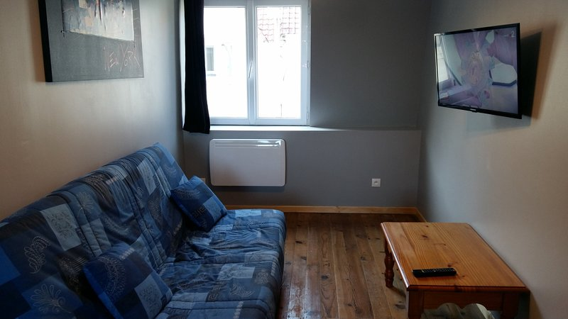 living room with sofa bed (sleeps 2) and LED TV (new)