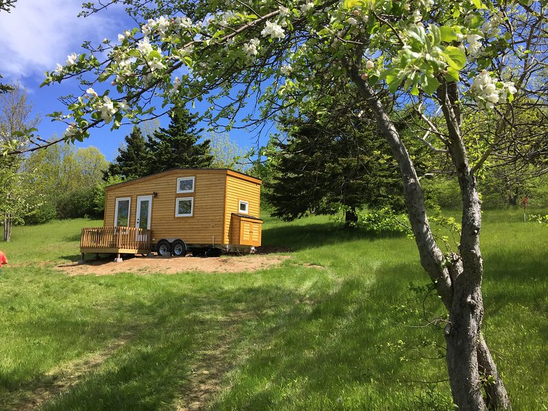 Tiny Nest House 7 km to Inverness or walk to secluded sandy beach with waterfall, vacation rental in Cape Breton Island