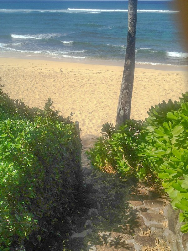 Steps leading down to beach from property