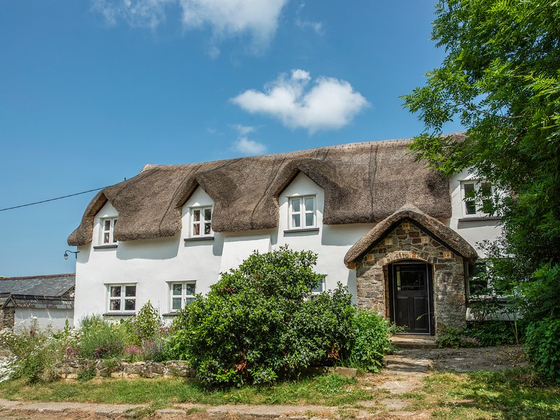 THE LONG HOUSE, thatched farmhouse, woodburner, snooker room, use of private, holiday rental in Sheepwash