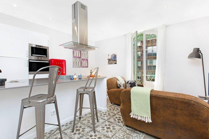 Stilvolle Wohnzimmer mit Balkon und offener Küche