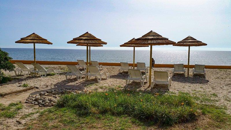 T1 (n°10) Corse bord de mer, holiday rental in San Giuliano