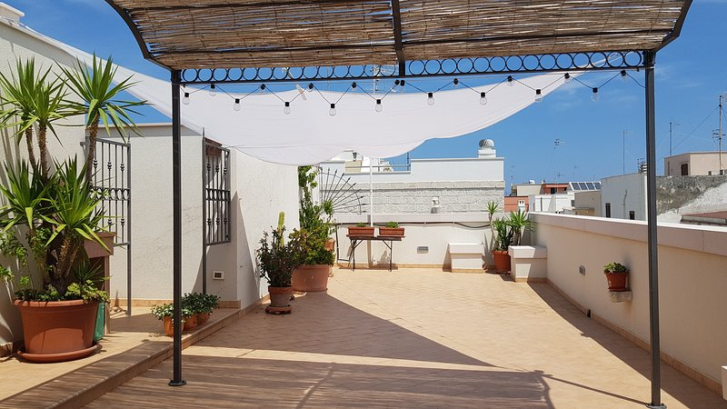 Our large terrace