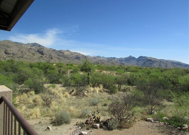 Picture Window Perfect-1 bedrm/den Stunning Mountain View- Many upgrades!!!, holiday rental in Tucson