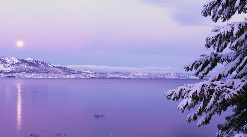 Majestic - Winter at the Lake