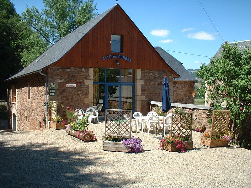 Spacious house with terrace & Wifi, holiday rental in Montpeyroux