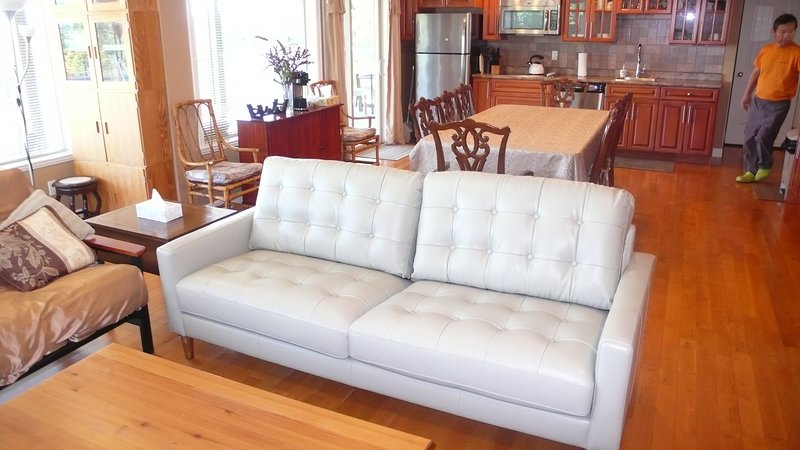 Great Rm 02 Leather Couch