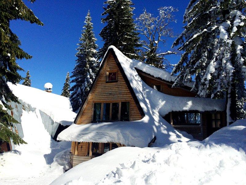 Chalet Snow Angel Jahorina, alquiler vacacional en Pale