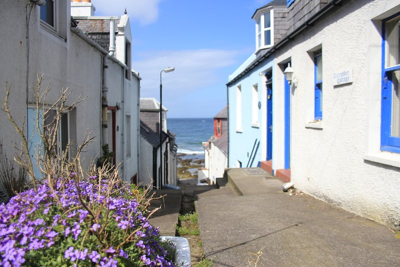 Alexander Cottage, vacation rental in Macduff