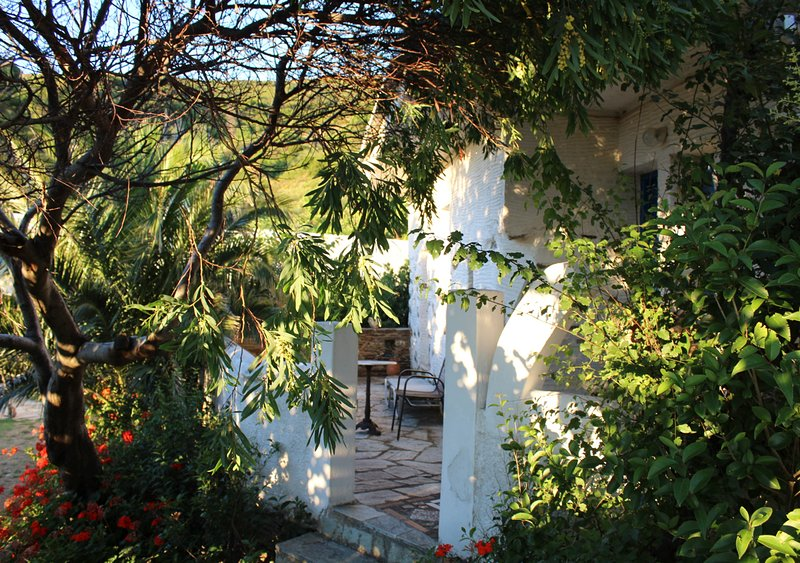 Andros- House Anadromes, holiday rental in Kypri