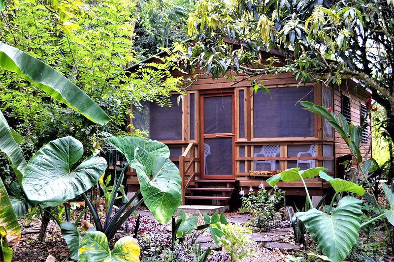 Iguana Roost, A Fully Equipped Two Bedroomed Cabin, Private Kitchen & Bathroom, vacation rental in San Ignacio