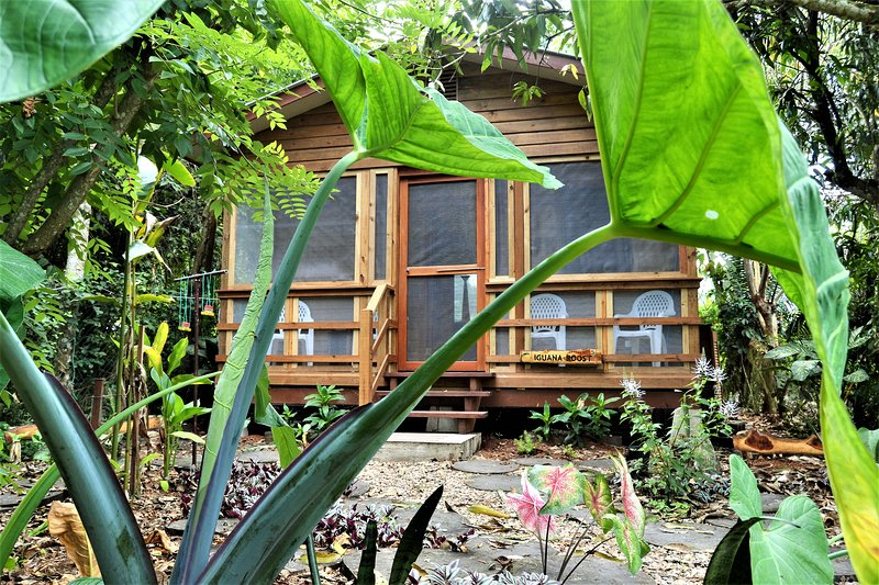 Iguana Roost Tourism Gold Standard Fully Equipped two Bedroom Cabin, holiday rental in San Ignacio