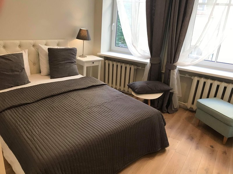 Modern Apartment In The City Centre, holiday rental in Paberze