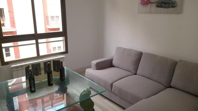 Beautiful apt in Logroño & Wifi, holiday rental in Fuenmayor