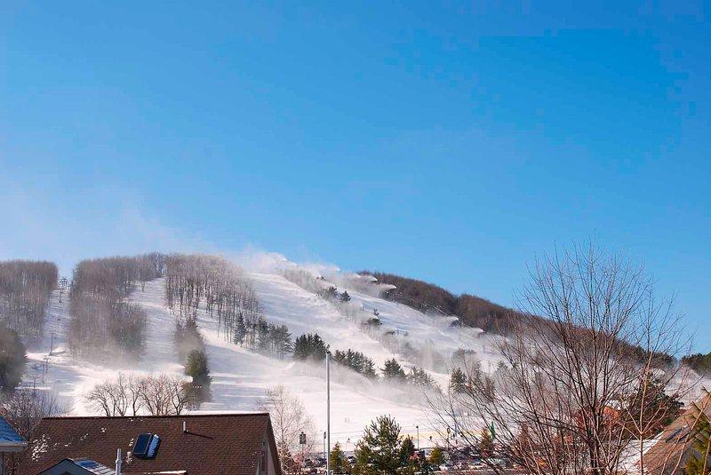 WISP ski slopes from the Lakepoint Community