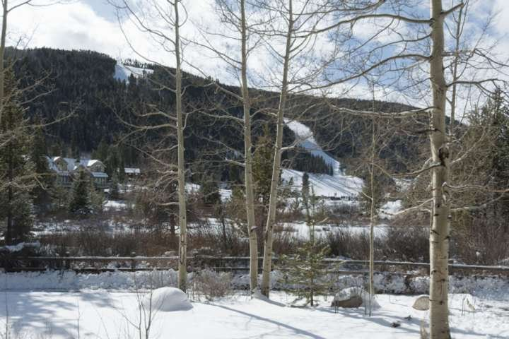 View The Slopes From Your Backyard