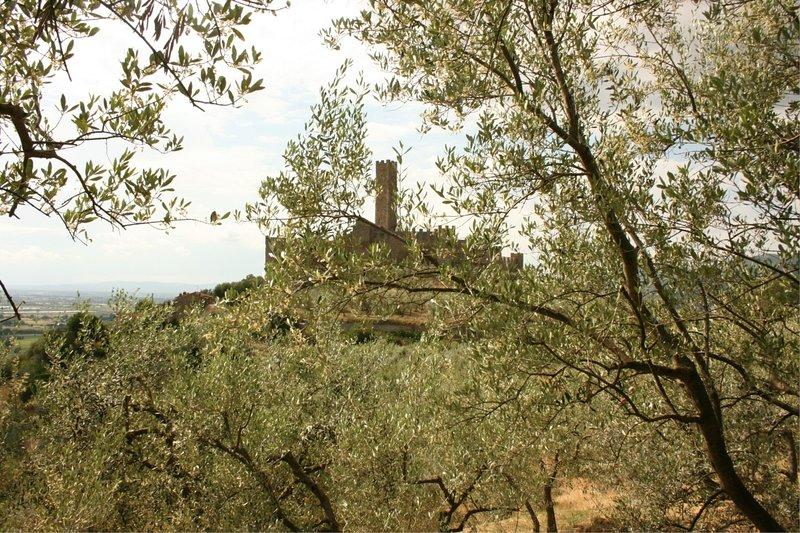 Montecchio Holiday Home Sleeps 4 - 5490376, vacation rental in Castroncello