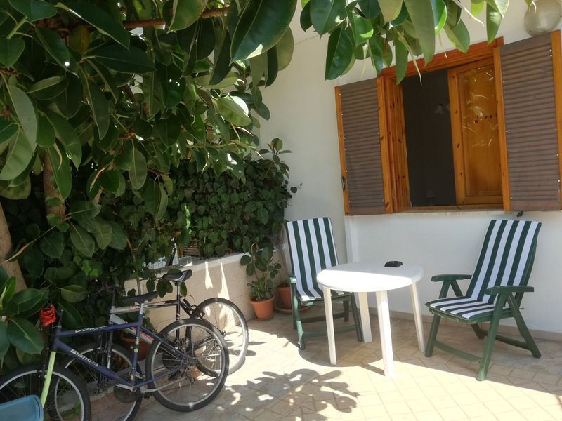 Front courtyard with bicycles