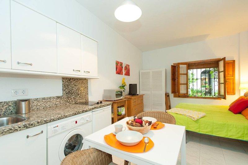 Alegre estudio situado en el corazón de la ciudad, casa vacanza a Siviglia