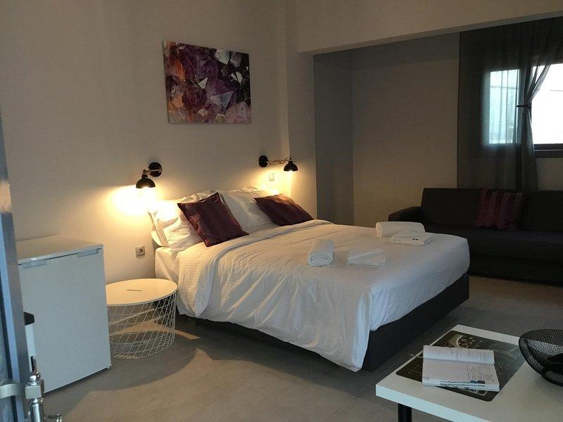 Faidra Apartments -  Amethyst Studio, holiday rental in Apolakkia