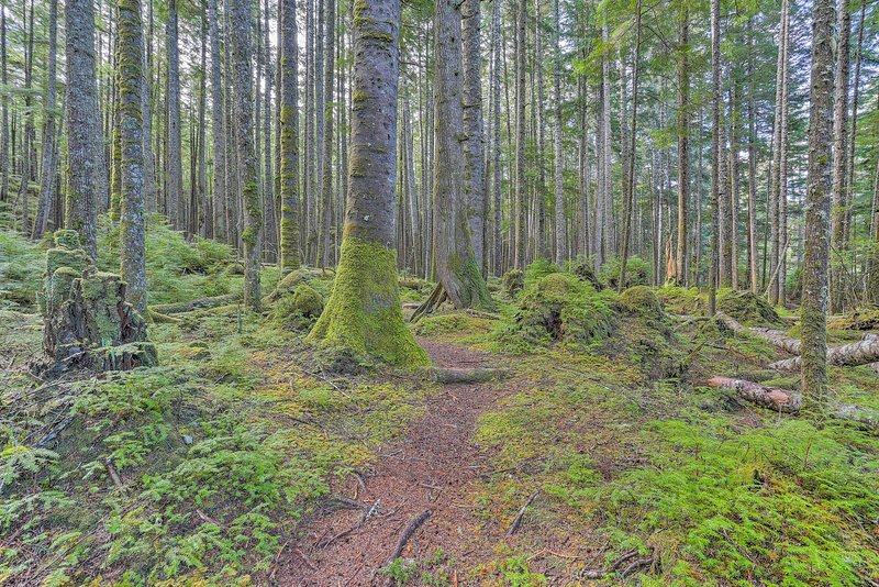 De natuur zijn slechts een hop, overslaan, en ga afstand van het huis.