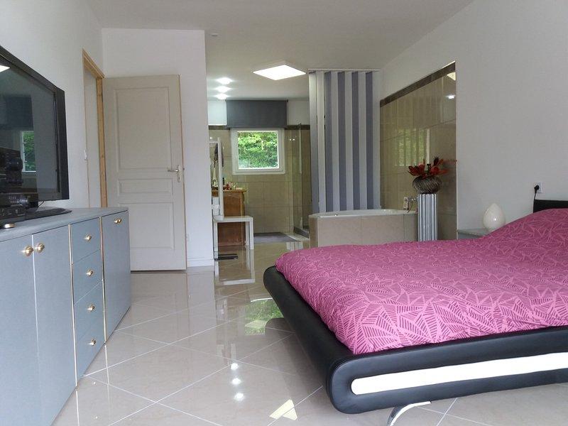 Maison lumineuse et spacieuse, vacation rental in Plan-de-Baix