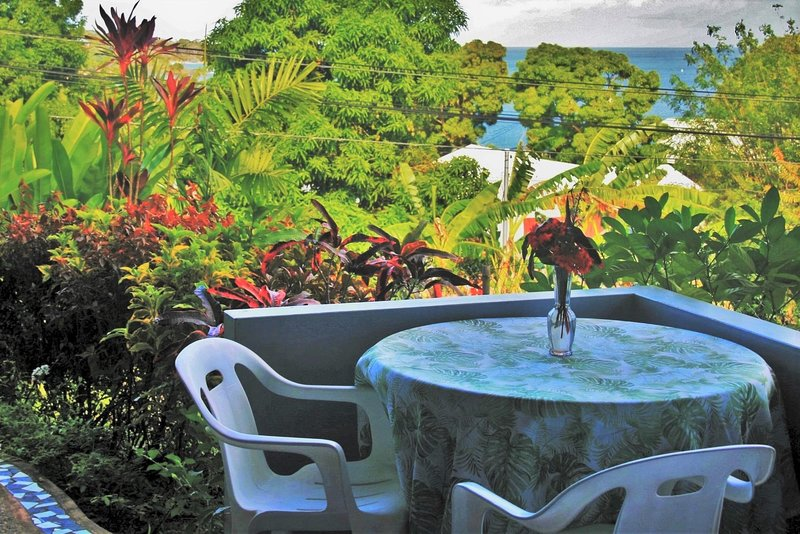 Dine on the patio with an ocean view of the Caribbean sea, surrounded by a lush tropical garden
