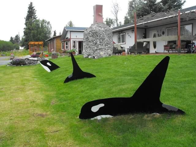 We are easy to spy. Look for the Orcas swimming in the yard