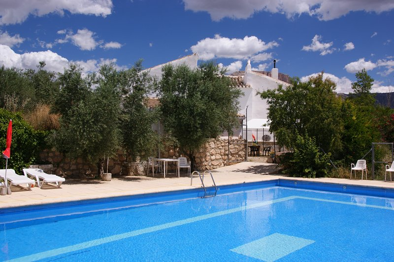 Relax in the apartment or lying by the pool overlooking the olive groves