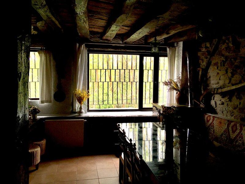 Living room overlooking the river in Villapajar