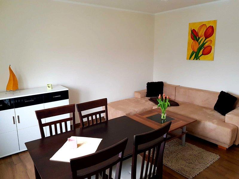 Ferienwohnung an der Elbfähre - für 2 - 3 Personen, vacation rental in Dresden