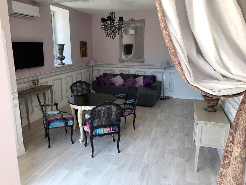 Cottage du chateau - duplex standing Azay le rideau, holiday rental in Azay-le-Rideau